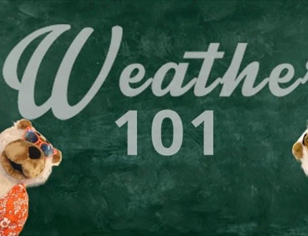 Weather 101_5636506379877107295