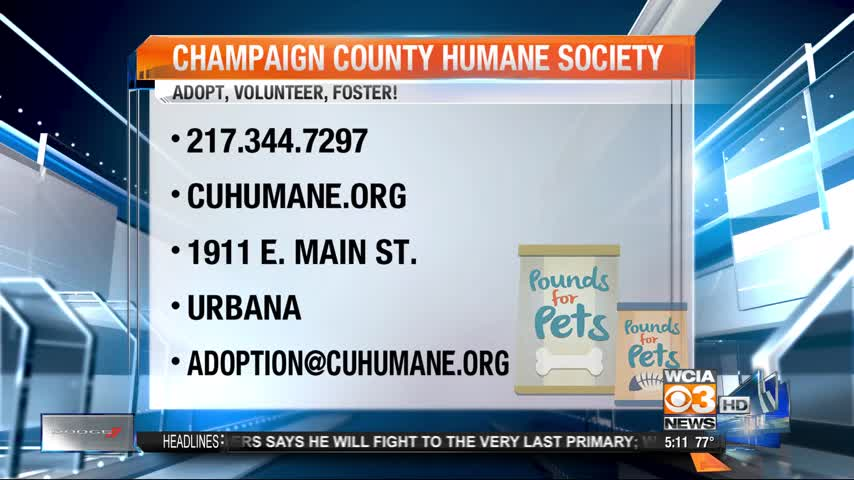 Pounds for Pets 5-10_20160608223105