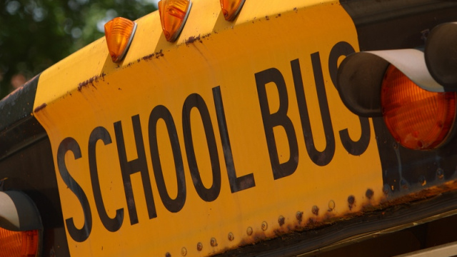 school-bus1_1487709587291.jpg