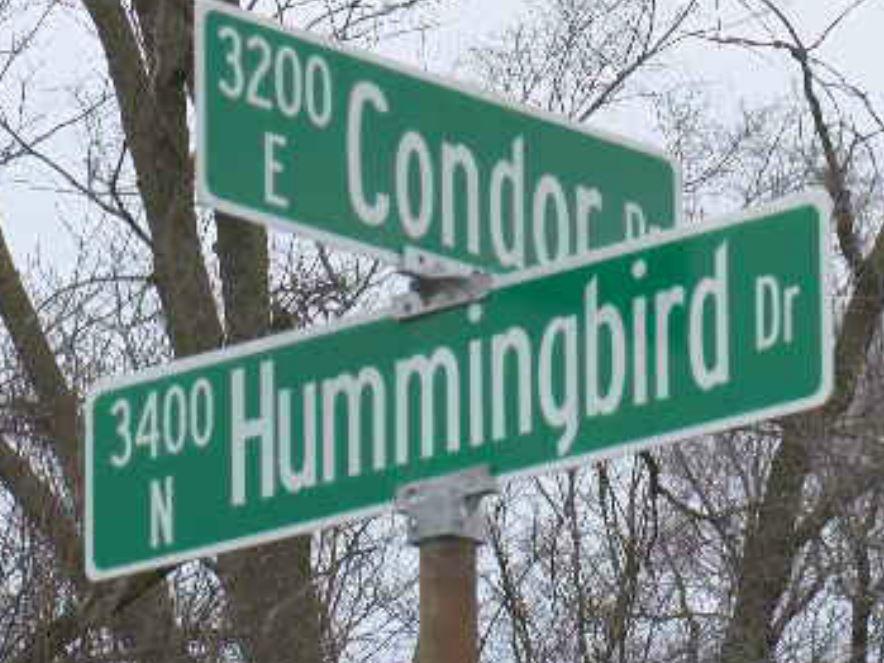 condor & hummingbird_1513637621001.JPG.jpg