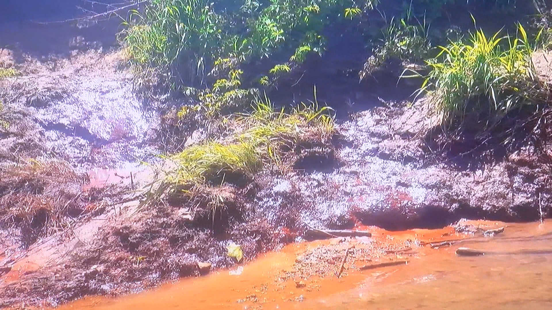 dynegy pollution_1517437220918.jpg.jpg