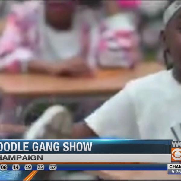 Noodle Gang