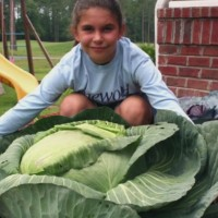 40-pound cabbage inspires 9-year-old to reduce food insecurity in the United States
