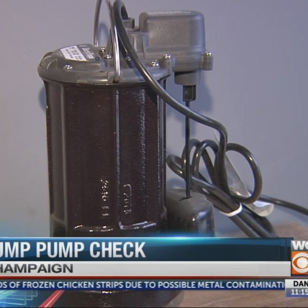 Sump Pump Check