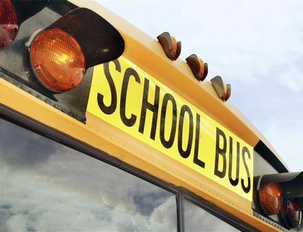 SCHOOL BUS GENERIC_-8625319537748521502