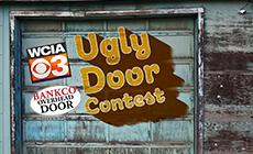 Ugly Door Contest