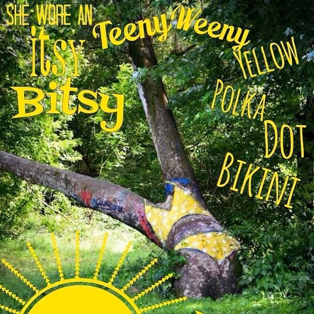 Decatur bikini 3 Bikini Tree dons Illini themed ensemble 8211 wcia com